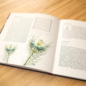 5-buchgestaltung-anne-seifriedDESIGN-seifenwelt-anne-kerber-saarland-seifenbuch
