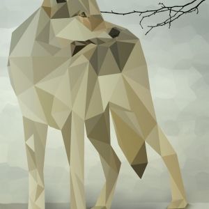 wolf-polygon anne-seifriedDESIGN